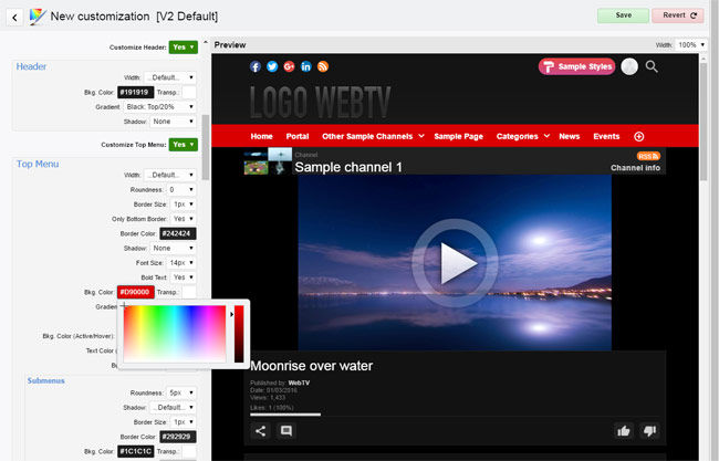 WS.WebTV Styler: Customization interface