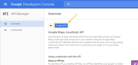 Google Developers Console: API Manager / Enable Google Maps Javascript API