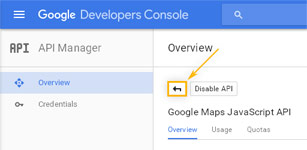 Google Developers Console: Return to API Manager Overview