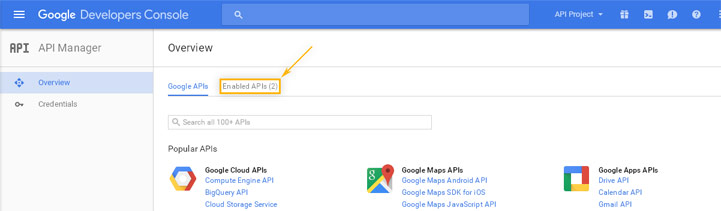 Google Developers Console: API Manager / Overview
