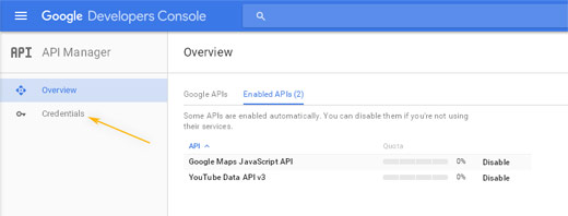 Google Developers Console: API Manager / Enabled APIs