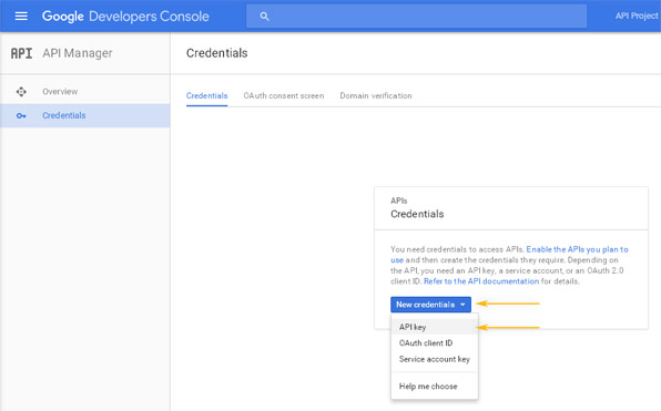 Google Developers Console: API Manager / Credentials
