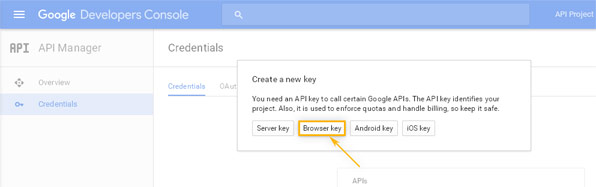 Google Developers Console: API Manager / Create new key